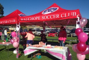 Stall_pink day